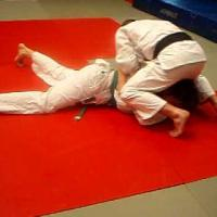 Basic turtle attack/ turnover Judo