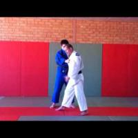 In-depth analysis of Ippon Seoi nage
