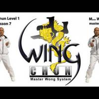 Wing Chun lesson 7: basic leg combination exercise/ moving forward with single kick