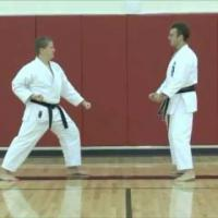Kihon ippon kumite - Extended training