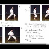Karate Terminology: Basic stances (1)