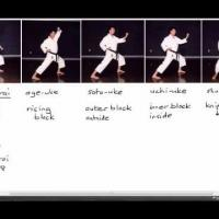 Karate Terminology: Basic Blocks Part 1