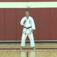 Karate Concepts: Zanshin