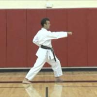 Karate Concepts: Small Details